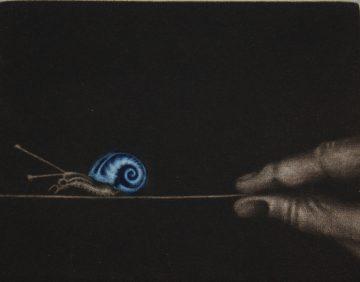 Deborah Chapman - Au coeur de la vie