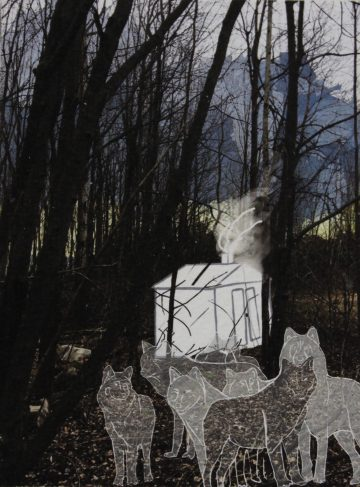 Johanne Berthiaume Sawyer - Loups crépusculaires