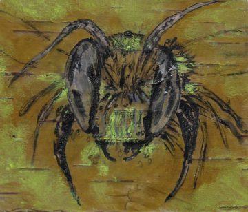 Josée Dinel - La belle abeille
